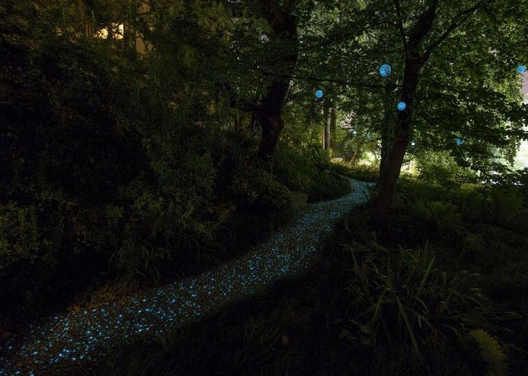 Fotoluminescenza Pavimentazione 3